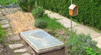 photos jardinage potager biologique. Black Bedroom Furniture Sets. Home Design Ideas